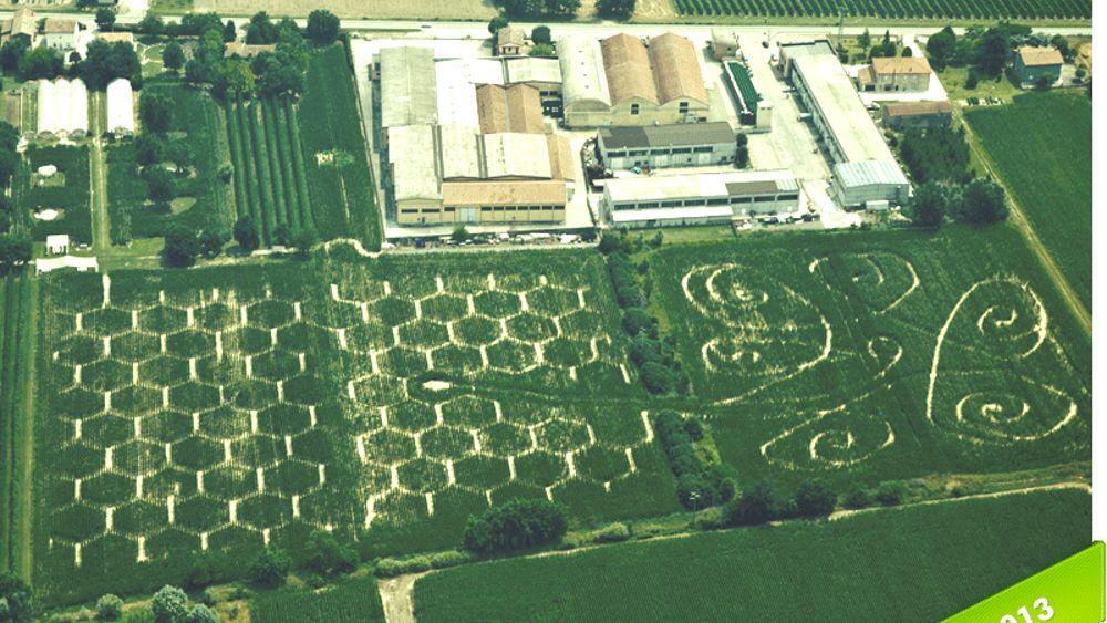Riapre il labirinto effimero di alfonsine l 39 estensione for Labirinto alfonsine
