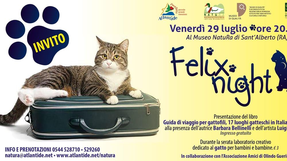 Venerdì 29 luglio Felix Night dedicata ai gatti al Museo Natura di … – RavennaToday